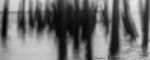 ZenPhotography_0083