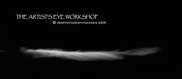 Zen Photography Workshops